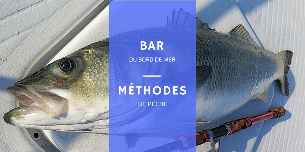 comment pêcher bar méthode facile canne à pêche leurre