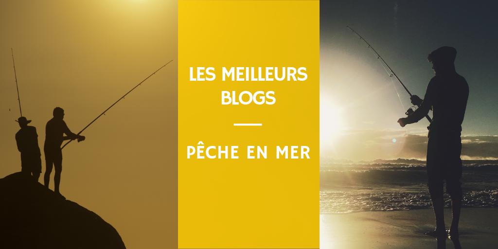 Liste des meilleures blogs de pêche, page et groupe facebook et youtube chaine de pêche en mer
