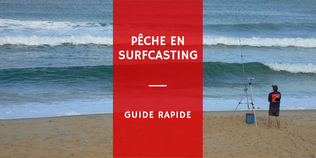 comment pêcher en surfcasting de maniére efficace poisson mer