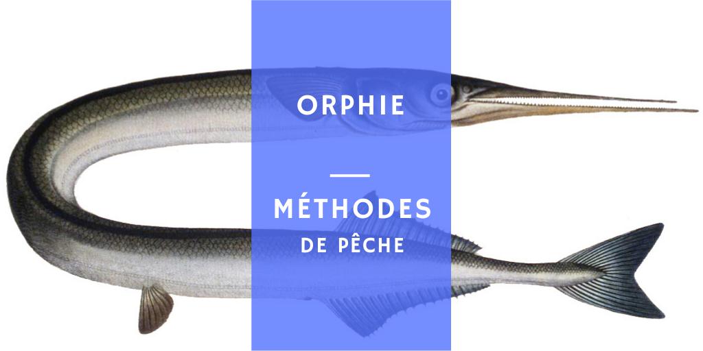 méthodes et techniques pêcher l'orphie ou l'aiguillette